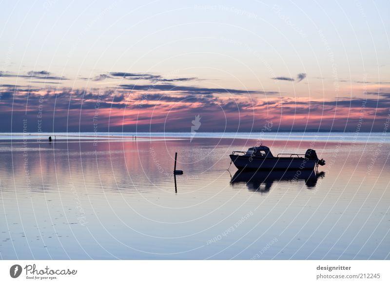 Abendboot Meer Sommer Ferien & Urlaub & Reisen ruhig Ferne Erholung Freiheit Wetter Ausflug Frieden Klima Freizeit & Hobby Gelassenheit Bucht Ostsee