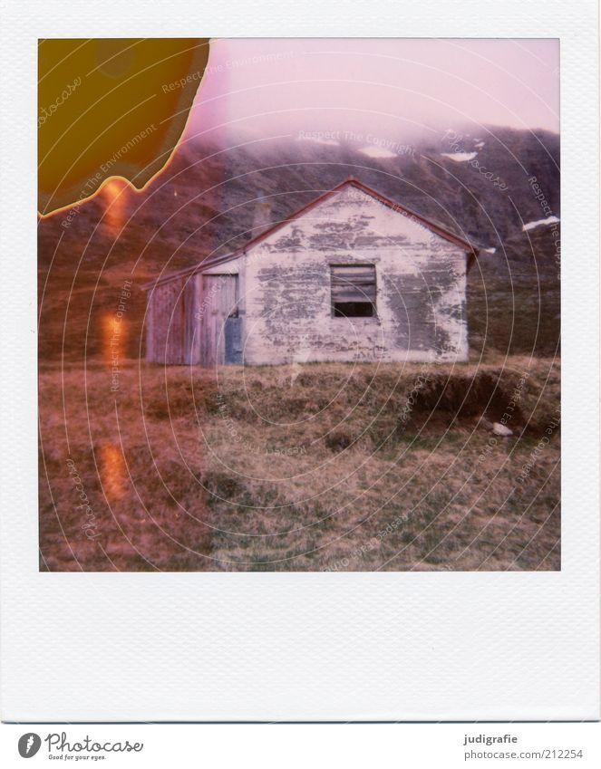 Island Umwelt Natur Landschaft Haus Einfamilienhaus Hütte Bauwerk Mauer Wand außergewöhnlich dunkel einzigartig wild Stimmung Einsamkeit Verfall Vergänglichkeit