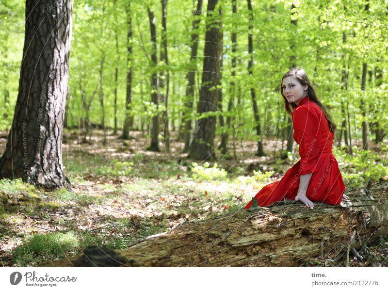 . Mensch Frau Pflanze schön Baum Erholung ruhig Wald Erwachsene Leben Frühling feminin Zeit Zufriedenheit frei ästhetisch