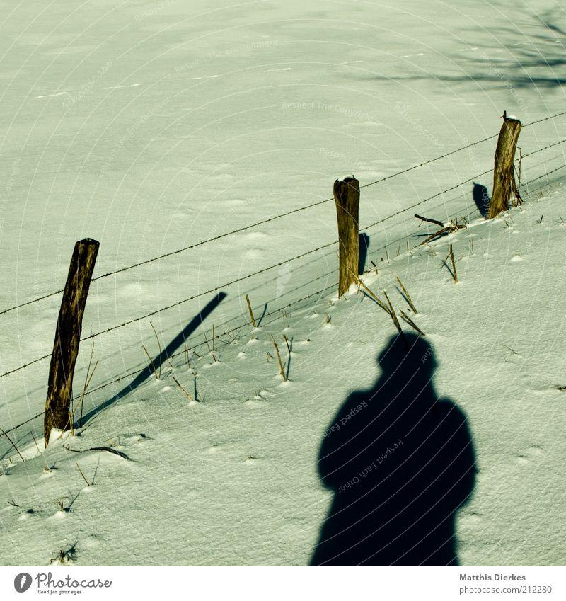 Winter Klimawandel Wetter Schönes Wetter Eis Frost Schnee ästhetisch Mensch Fotografieren Weide Wiese Zaun Zaunpfahl Selbstportrait wandern Freizeit & Hobby