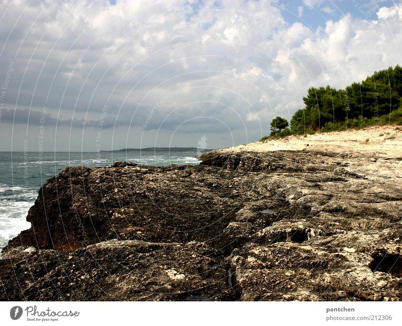 Frisch aus Kroatien Natur Wasser Himmel Baum Meer Sommer Ferien & Urlaub & Reisen Wolken Ferne Erholung Stein Landschaft Stimmung Küste Wellen Umwelt