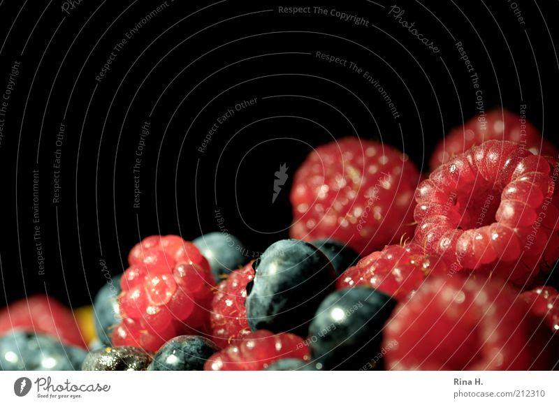 Beerenhunger Lebensmittel Frucht Himbeeren Blaubeeren Ernährung Bioprodukte Vegetarische Ernährung frisch lecker süß blau rot schwarz Vitamin Farbfoto