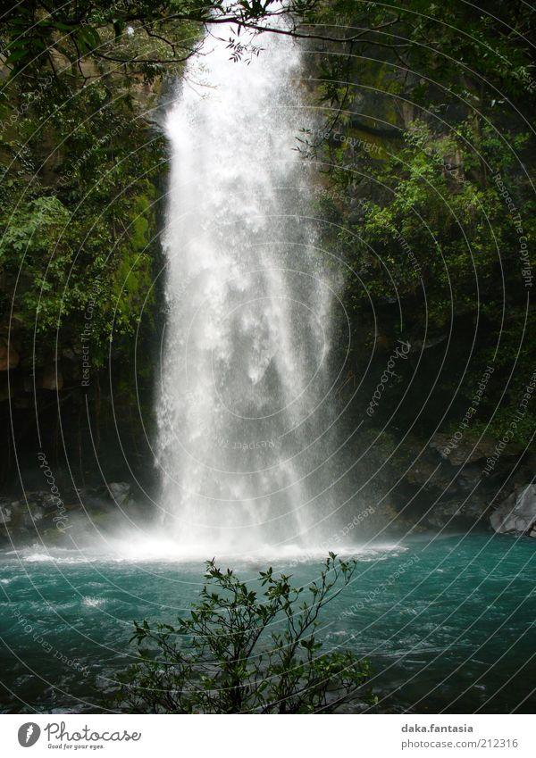 Wasserfall Wasser schön weiß grün blau Pflanze ruhig Landschaft nass Energie frisch ästhetisch weich rein Flüssigkeit Urwald