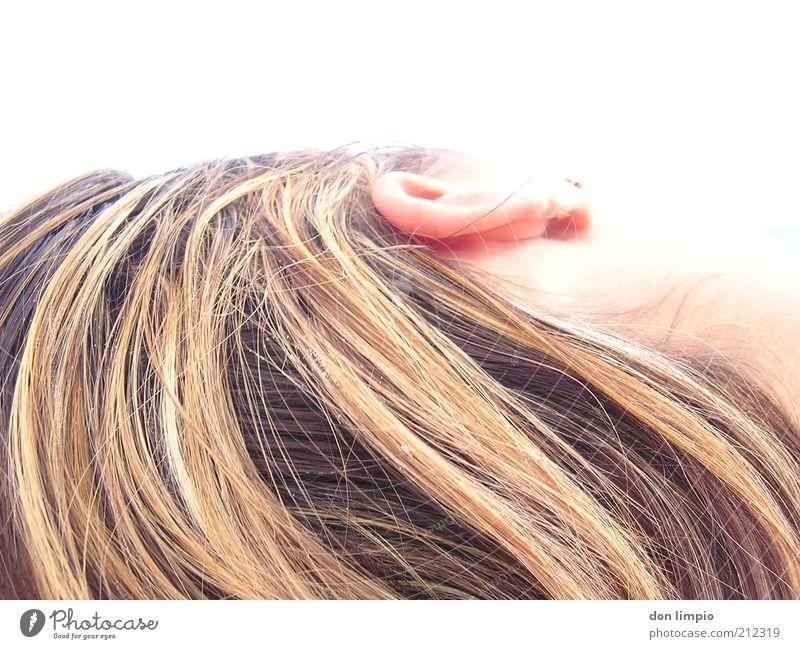 tagtraum elegant schön Haare & Frisuren feminin Junge Frau Jugendliche Kopf Ohr 1 Mensch 18-30 Jahre Erwachsene liegen träumen blond Wärme Gelassenheit Farbfoto