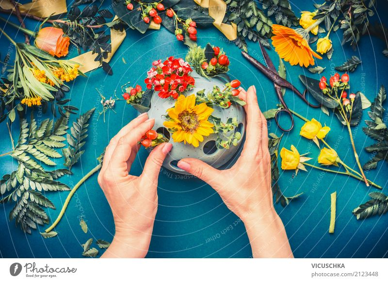 Weibliche Hände machen Herbst Blumen Deko Mensch Frau Natur Pflanze Sommer Hand Blatt Erwachsene Lifestyle Blüte Innenarchitektur feminin Stil Feste & Feiern