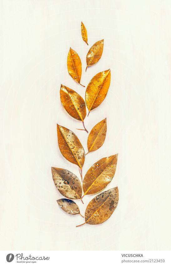 Goldene Herbst Blätter Lifestyle Stil Design Sommer Natur Pflanze Blatt Dekoration & Verzierung Zeichen gelb gold Composing Farbfoto Innenaufnahme