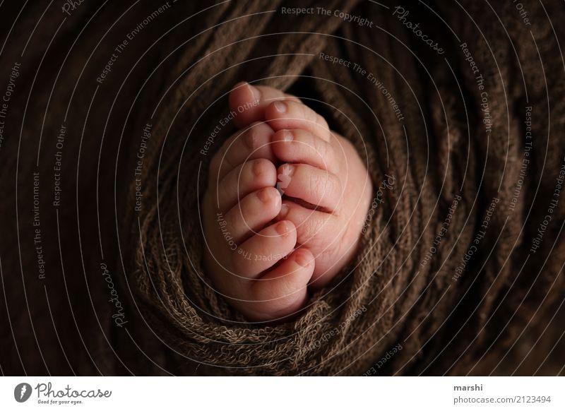 BabyFüße Kleinkind 0-12 Monate Gefühle Stimmung Nachkommen Zehen klein braun newborn süß Liebe 10 zart Kind Vertrauen Fuß Farbfoto Innenaufnahme Nahaufnahme
