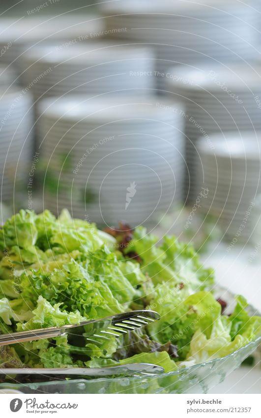 Unangetastet Lebensmittel Salat Salatbeilage Ernährung Büffet Brunch Festessen Geschirr Teller Schalen & Schüsseln Besteck frisch Gesundheit lecker grün weiß