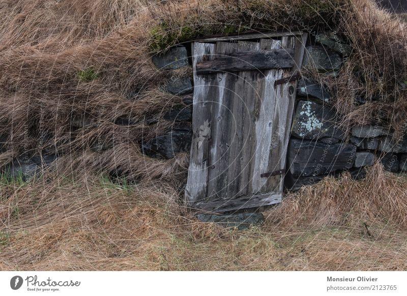 Alte Frau auf Island Landschaft Gras Wiese braun Bauernhof Romantik alt Unbewohnt Holz Tür Neigung Der kleine Hobbit Farbfoto Außenaufnahme