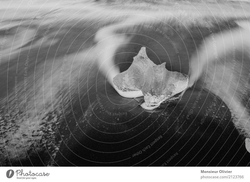 Eis am Strand weiß Meer schwarz Küste Bewegung Wellen ästhetisch Frost Island Gletscher Eisberg
