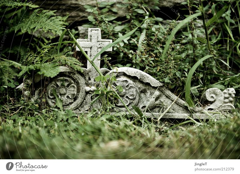 R U H E ! ! Sommer Zeichen Traurigkeit Trauer Tod Einsamkeit ruhig Farbfoto Außenaufnahme Grabmal Christliches Kreuz Ornament ornamental Vergänglichkeit
