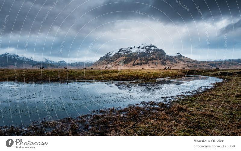 Island Wasser Himmel Wolken Gewitterwolken Herbst Winter Wetter schlechtes Wetter Unwetter Wind Sturm Gefühle Stimmung Berge u. Gebirge dramatisch Feld Farbfoto
