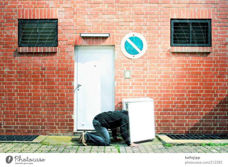 eiszeit maskulin Mann Erwachsene 1 Mensch knien krabbeln Blick Kühlschrank Halteverbot Schilder & Markierungen Tür Neugier kühlen Kühlung Backstein Farbfoto