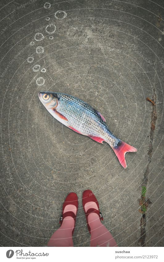 fisch an land (2) Fisch Attrappe Papier falsch Surrealismus seltsam Beine Fuß Schuhe Strümpfe stehen Außenaufnahme weiblich Straße rosa rot Blase