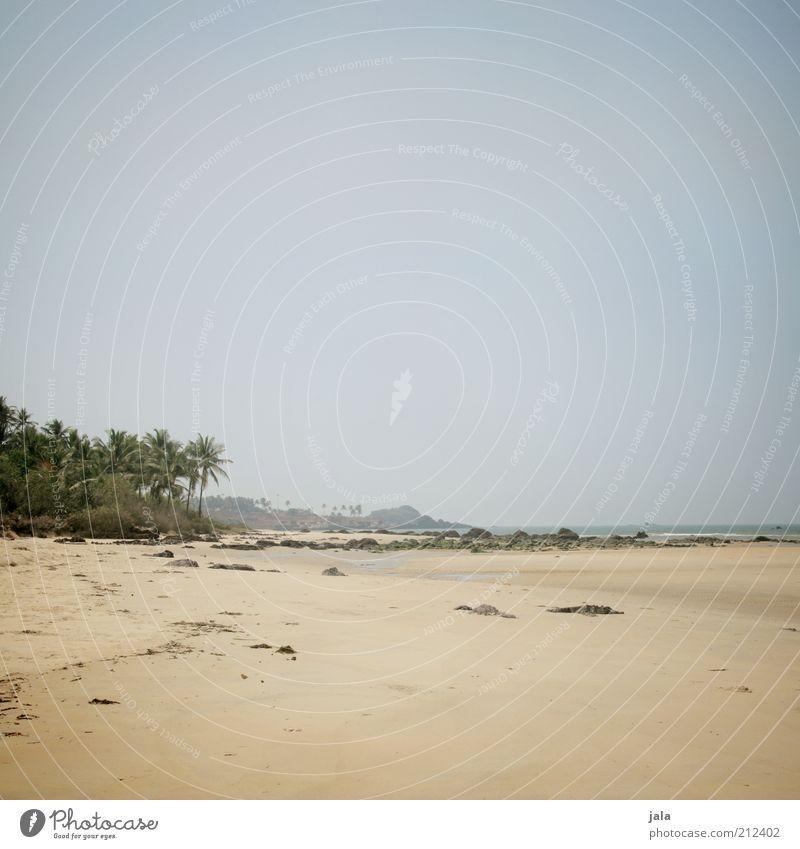 the beach Himmel Natur Baum Pflanze Sommer Strand Ferien & Urlaub & Reisen Meer Ferne Freiheit Landschaft frei Unendlichkeit Palme Indien Goa