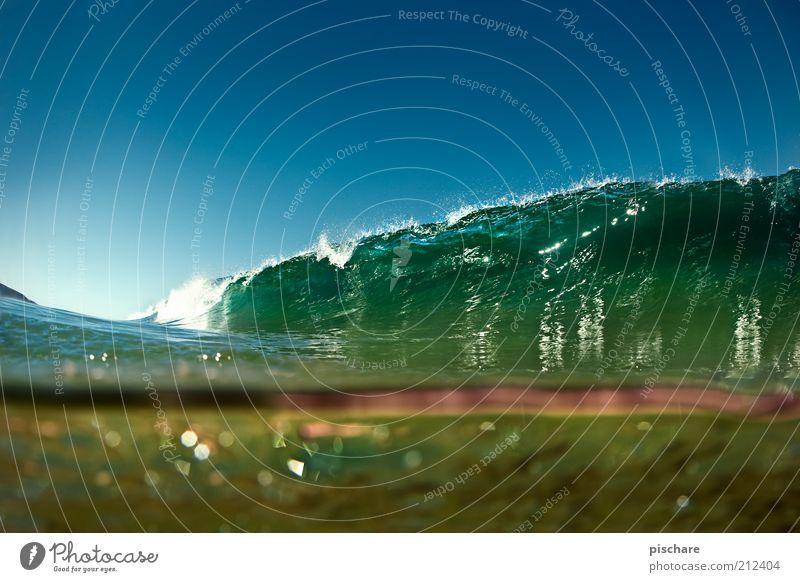 Heaven... Natur Urelemente Wasser Wolkenloser Himmel Sommer Schönes Wetter Wellen Meer tauchen ästhetisch außergewöhnlich exotisch fantastisch gigantisch grün