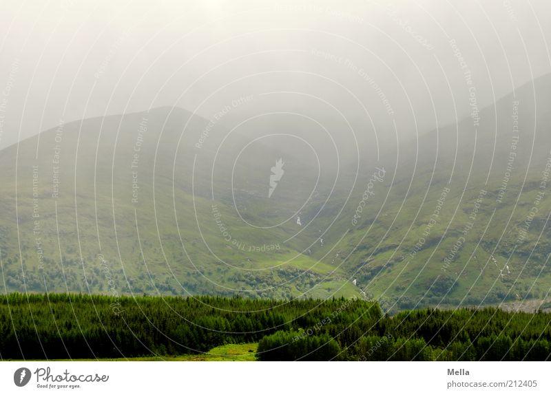 Green and Grey IV Ferien & Urlaub & Reisen Ausflug Ferne Umwelt Natur Landschaft Pflanze Urelemente Klima Wetter Nebel Hügel Berge u. Gebirge Tal natürlich grau