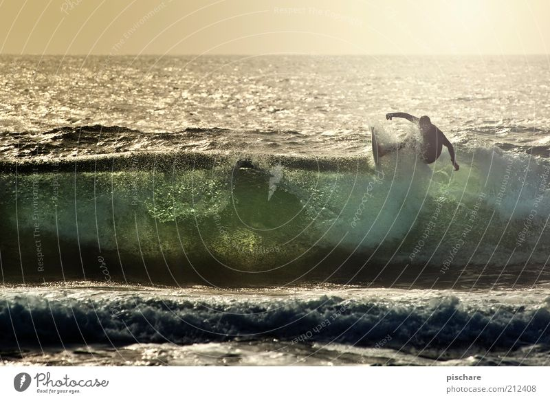 Praia Norte Mann Wasser Sommer Freude Meer Ferne Sport Erwachsene Gesundheit Wellen Kraft Horizont Freizeit & Hobby Coolness außergewöhnlich Mut