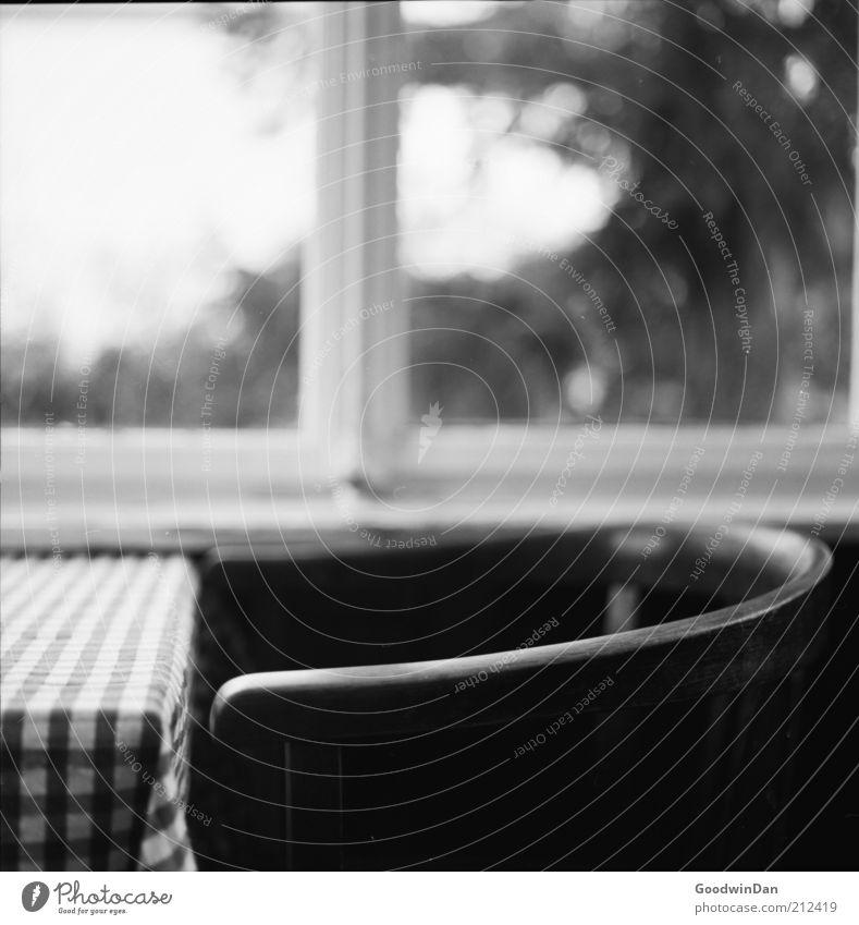 analoger Wintergarten Stuhl Tisch Fenster Fensterscheibe Holz trist Wärme Gefühle Stimmung Zufriedenheit Frühlingsgefühle Schwarzweißfoto Innenaufnahme