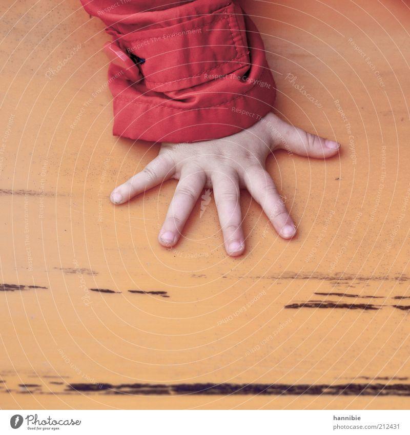 phive Mensch Kind Hand rot gelb Spielen klein Finger Freizeit & Hobby berühren Kindheit festhalten Jacke 5 niedlich