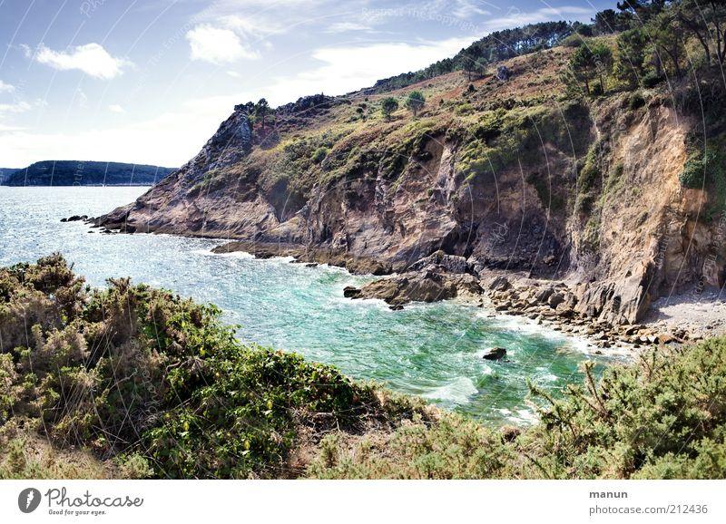 Postolonnec Natur Ferien & Urlaub & Reisen Baum Pflanze Sommer Meer Ferne Umwelt Landschaft Küste Stein Felsen außergewöhnlich wild hoch Tourismus