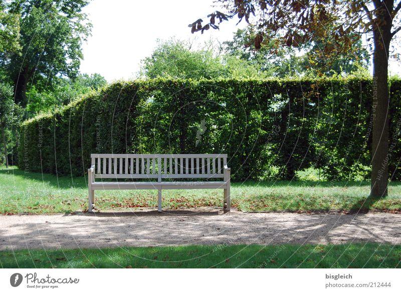 Bank Erholung ruhig Hecke Park Garten Holz grün Wege & Pfade Farbfoto Außenaufnahme Sonnenlicht Schatten Parkbank Menschenleer Baum Natur Erholungsgebiet Tag
