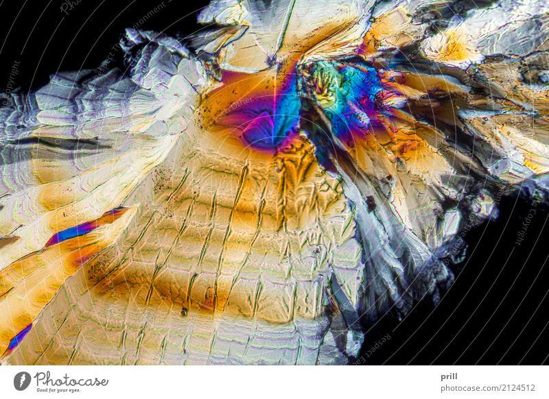 Trisodium citrate microcrystals Natur Beleuchtung Hintergrundbild außergewöhnlich authentisch Wissenschaften leicht Kristallstrukturen Mineralien künstlich