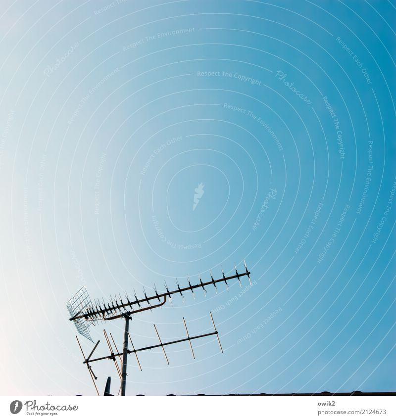 Ich sehe nichts Informationstechnologie Antenne Fernsehen Empfang empfangsbereit Empfangsstation Wolkenloser Himmel Metall dünn authentisch einfach fest oben