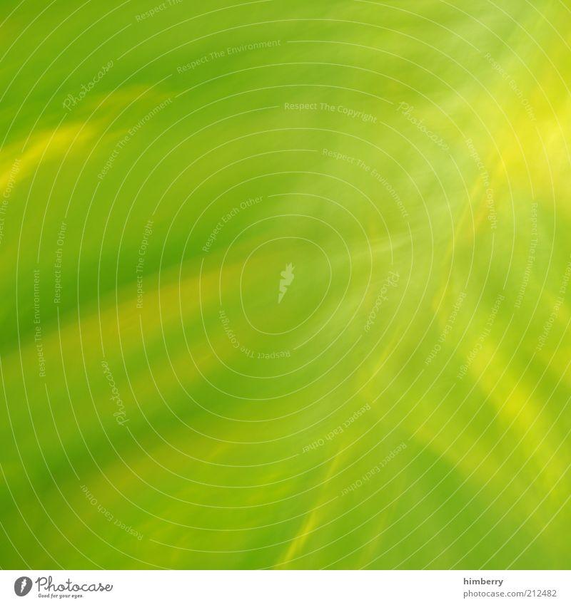 grüngelblich Werbebranche Kunst Kunstwerk Umwelt Natur Pflanze Frühling Sommer Grünpflanze Design Farbe Frieden Klima Surrealismus grün-gelb Farbfoto mehrfarbig