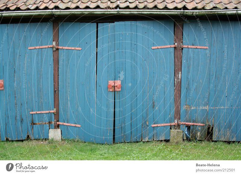 Wir müssen leider draußen bleiben! alt blau Einsamkeit Gefühle Gras Garten Holz Raum Umwelt geschlossen trist Dach Häusliches Leben Vergänglichkeit Dorf