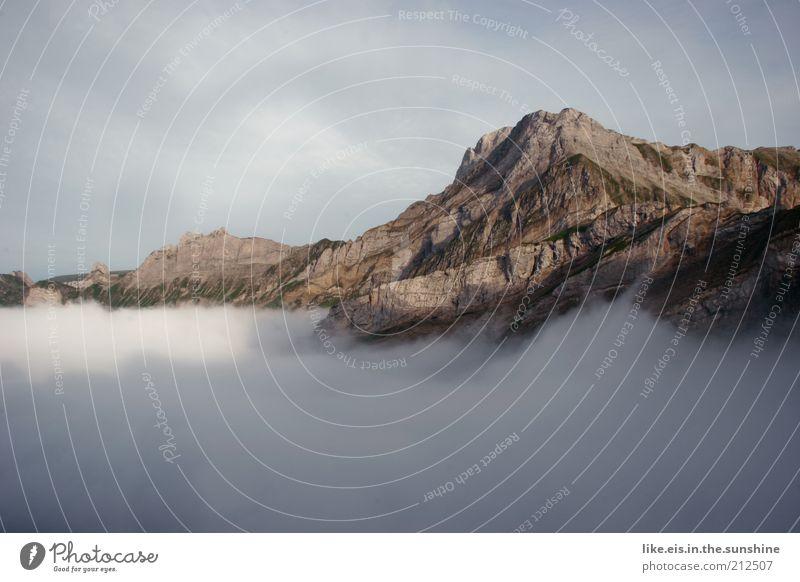 üüüüber den wolken.... (V) Natur schön Sommer ruhig Wolken Ferne Erholung Berge u. Gebirge Freiheit grau Landschaft Zufriedenheit Nebel Wetter Felsen ästhetisch
