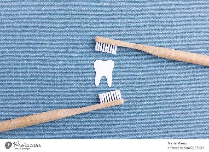 Zähne putzen blau weiß Gesundheit Holz frisch Sauberkeit Reinigen Gebiss nachhaltig Zahnpflege Reinlichkeit gewissenhaft Zahnbürste Tugend