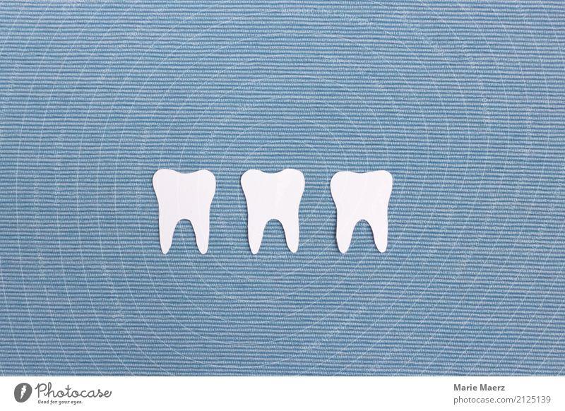 Weiße Zähne blau schön weiß Gesundheit Gesundheitswesen glänzend frisch Sauberkeit Reinigen Zahnpflege Reinlichkeit