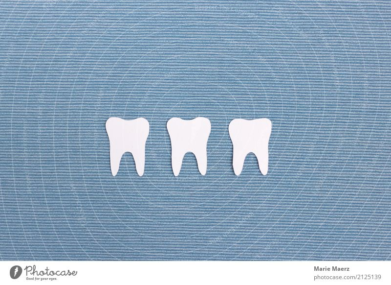 Weiße Zähne schön Gesundheit glänzend Reinigen frisch Sauberkeit blau weiß Reinlichkeit Gesundheitswesen Zahnpflege Zahnreinigung 3 Wurzeln Farbfoto