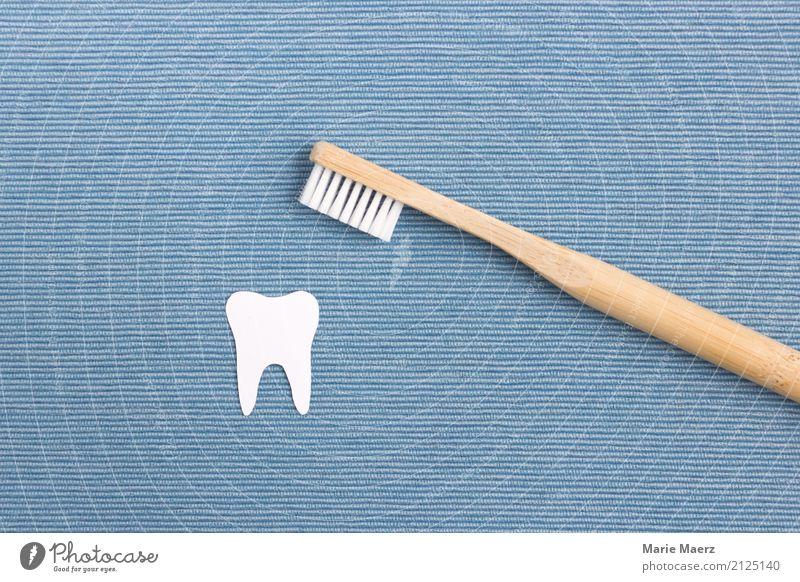 Zahnpflege blau weiß Gesundheit Holz Gesundheitswesen glänzend ästhetisch Sauberkeit Reinigen Körperpflege nachhaltig Zahnarzt Reinlichkeit Zahnbürste