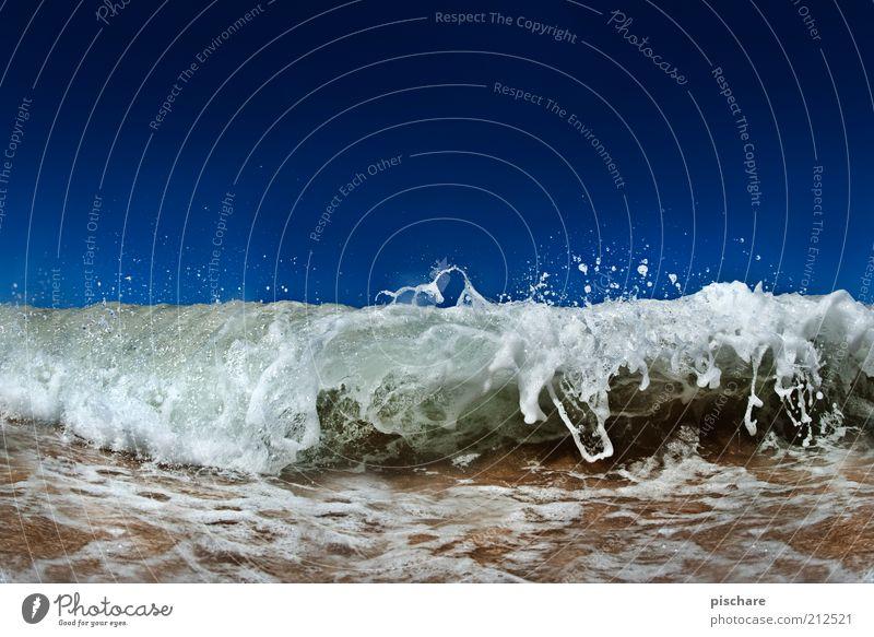 Wasserscheu? Natur schön Meer blau Sommer Bewegung Kraft Küste Wellen nass Wassertropfen ästhetisch außergewöhnlich Urelemente Schönes Wetter