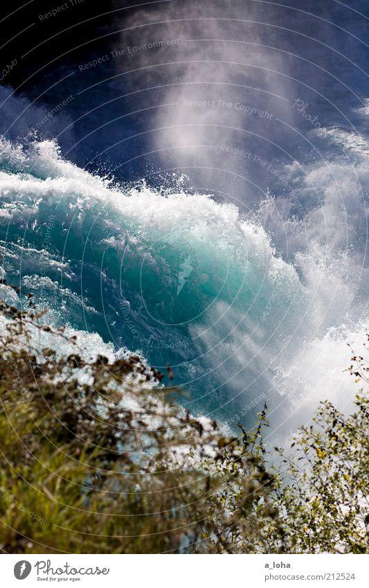huka falls Natur blau Einsamkeit Ferne Gras Bewegung Wellen Kraft nass Ausflug Tourismus natürlich Sträucher Macht Fluss Urelemente