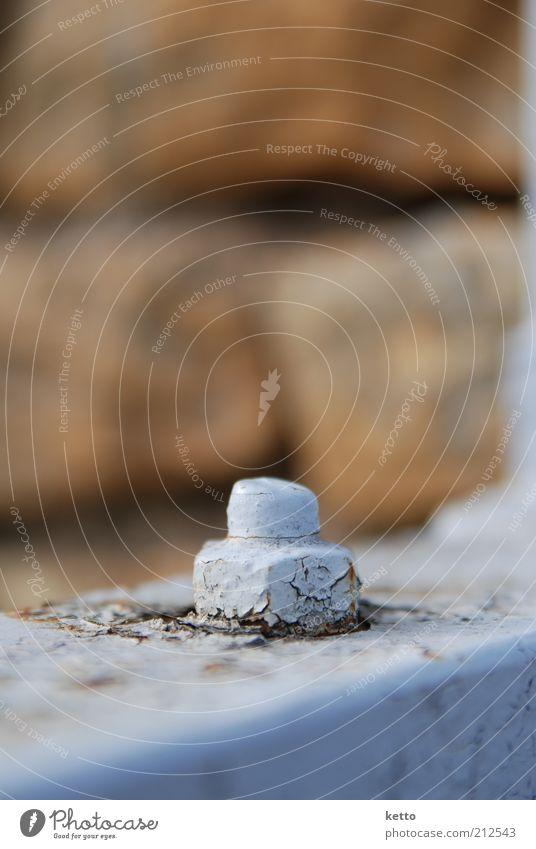 Mutterschutz Mauer Wand Schraubenmutter Metall Stahl dreckig fest braun Schutz Sicherheit stagnierend Verfall lackiert Farbfoto Außenaufnahme Nahaufnahme