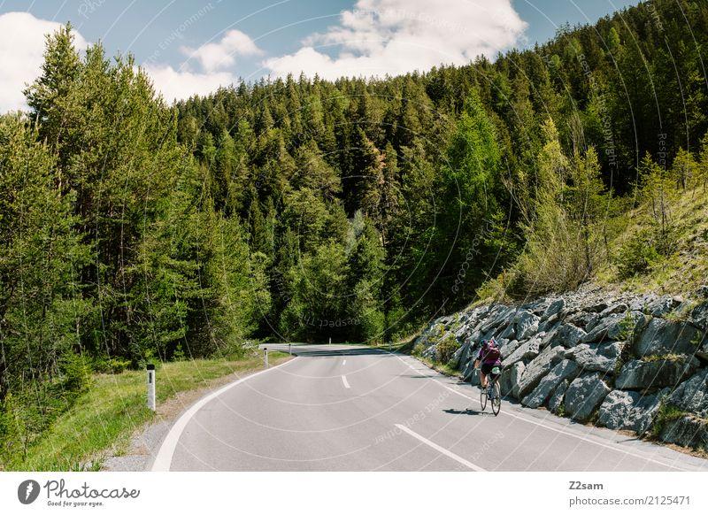 Norbertshöhe Himmel Ferien & Urlaub & Reisen Jugendliche Junge Frau Sommer Landschaft Erholung Wald Berge u. Gebirge 18-30 Jahre Erwachsene feminin Sport