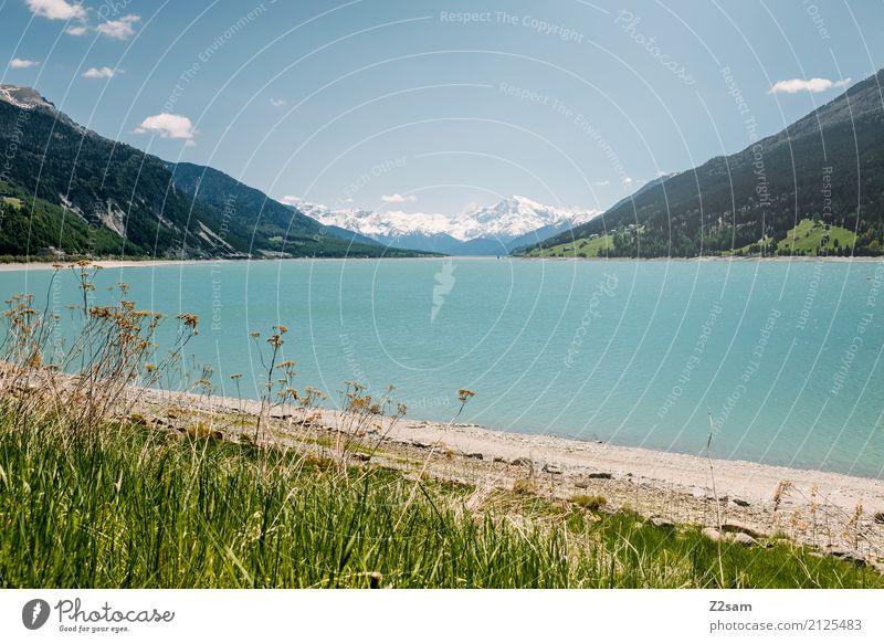 Reschensee Umwelt Natur Landschaft Himmel Sommer Schönes Wetter Sträucher Wiese Alpen Berge u. Gebirge Seeufer Ferne gigantisch natürlich blau grün türkis ruhig