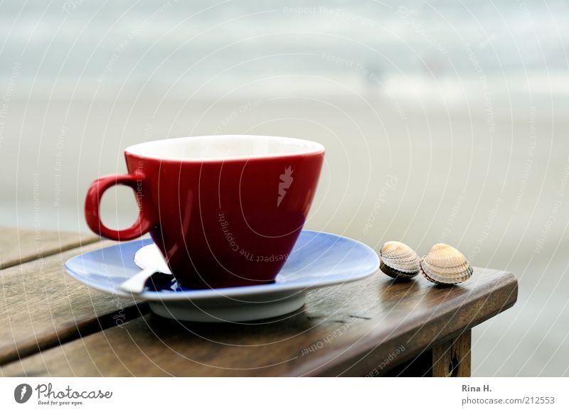 Zweisam Meer rot Strand ruhig Erholung Gefühle Glück Zufriedenheit Tisch authentisch Lebensfreude Tasse Muschel Geborgenheit harmonisch Zusammenhalt