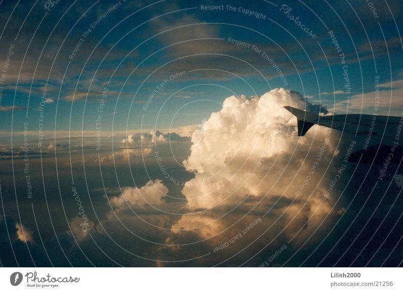 Fly away Himmel Sonne Ferien & Urlaub & Reisen Wolken Horizont Luftverkehr