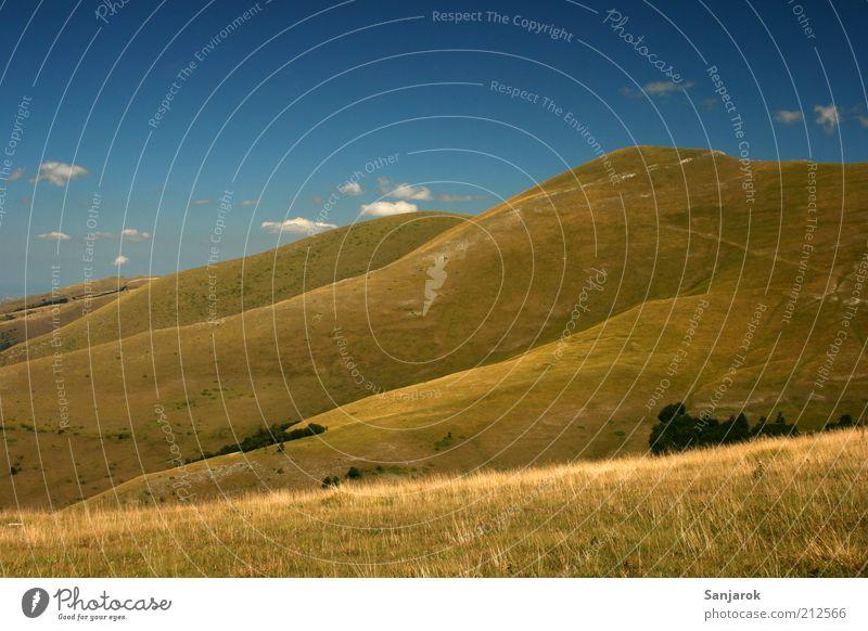 Dream of the Teletubbie Natur Sommer ruhig Ferne Gras Berge u. Gebirge Freiheit Landschaft Umwelt Italien Hügel Gipfel Fernweh Grasland Alm