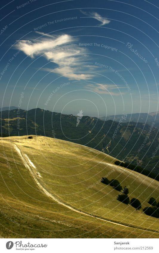 The way to true felicity Natur Sommer ruhig Wolken Ferne Erholung Gras Berge u. Gebirge Freiheit Landschaft Umwelt Aussicht Frieden Italien Alpen Unendlichkeit