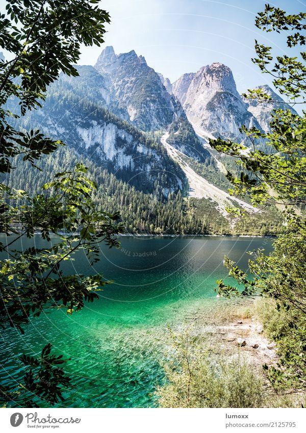 gosausee Natur blau Sommer grün Wasser Baum Landschaft Berge u. Gebirge Küste grau See Felsen wandern Europa Schönes Wetter Gipfel