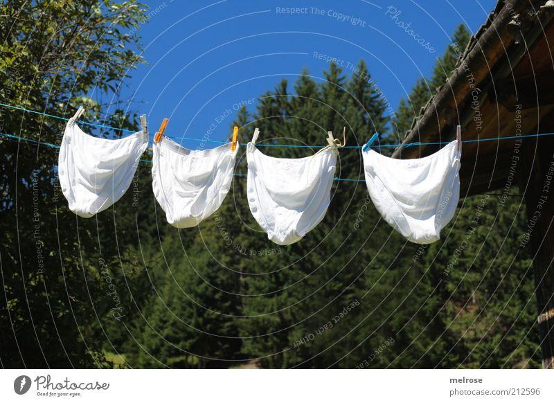 Schlüpferwäsche auf der Alm Natur blau weiß grün Baum Sommer Erholung Landschaft Dach Sauberkeit rein Gelassenheit Hütte Duft Wäsche trocknen
