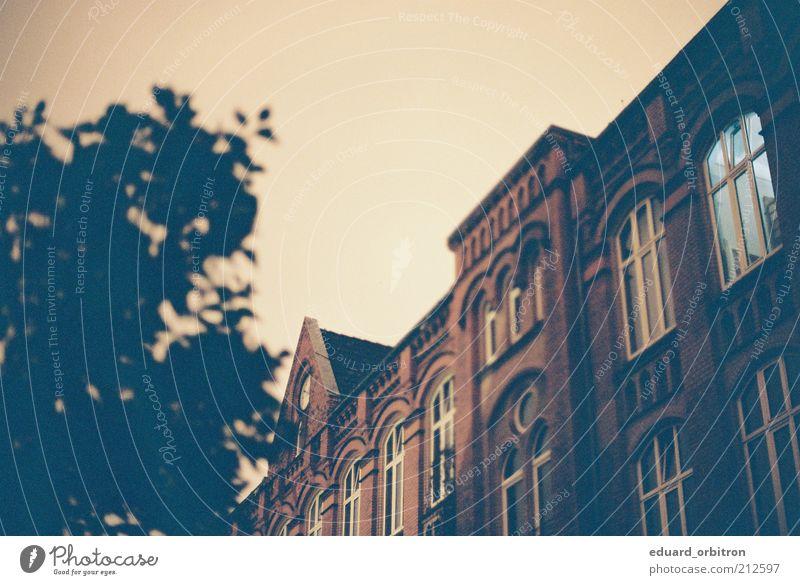 Home Sweet Home alt Wand Fenster Mauer Architektur Gebäude Fassade Dach Baumkrone Bremen altehrwürdig Altstadt Historische Bauten