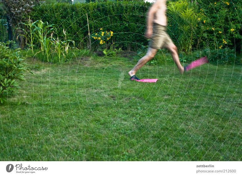 Noch ein Schritt... Mensch Mann Pflanze Freude Erwachsene Gras Garten gehen laufen Rasen rennen anonym Schwimmhilfe kopflos August unerkannt