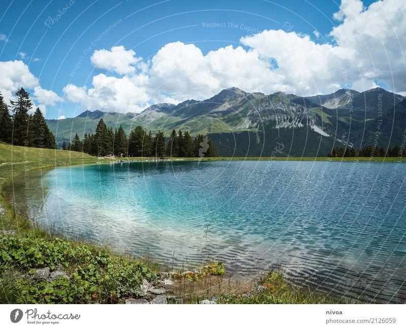 Speichersee Lenzerheide Sommerurlaub Berge u. Gebirge wandern Schwimmen & Baden Umwelt Natur Landschaft Pflanze Tier Urelemente Wasser Himmel Wolken Klima