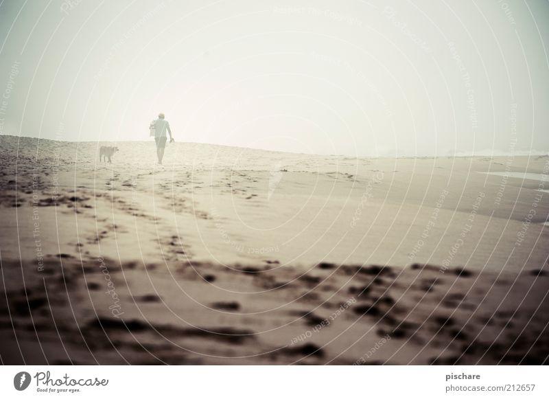Mann mit Hund im Nebel Mensch Meer Sommer Strand ruhig Einsamkeit Ferne Gefühle Erwachsene gehen maskulin trist Spuren